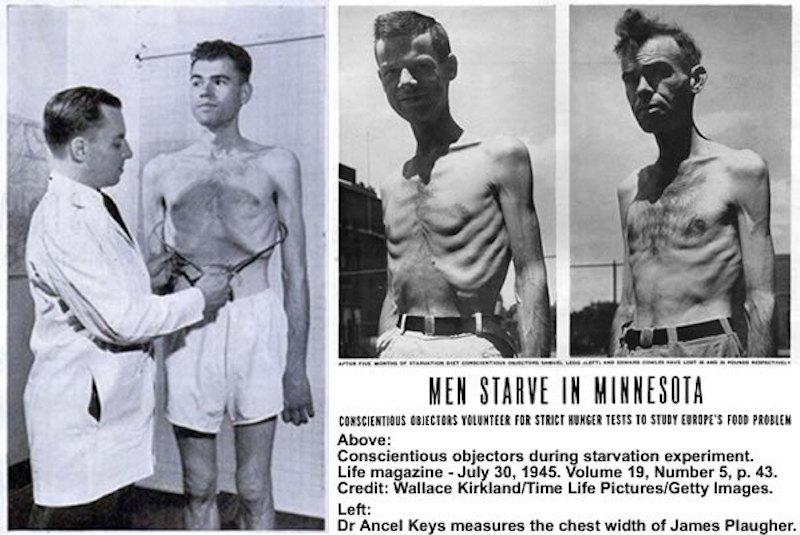 Minnesota starvation study